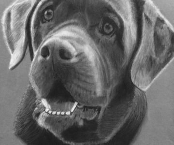 Pup by Leah - Charcoal for Beginners